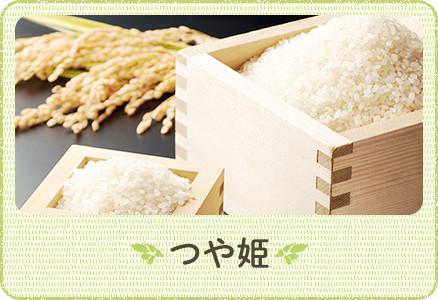 山形県寒河江産の特別栽培米 つや姫