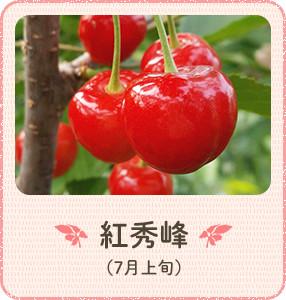 酸味が控えめ口の中に甘味が広がります 紅秀峰(7月上旬)