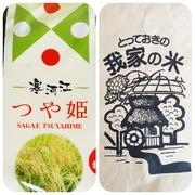 令和2年山形県寒河江市産 つや姫5kg&はえぬき5kg食べ比べセット(精米)