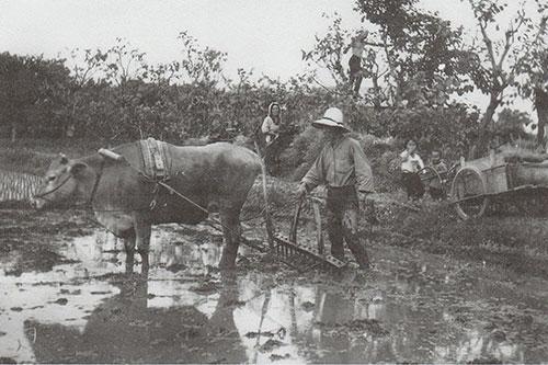 高瀬山農場の紹介